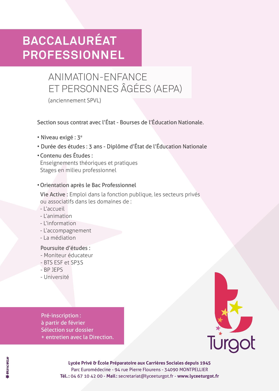 Bac pro AEPA